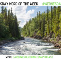 FLOW: The Wednesday Word #WednesdayWisdom